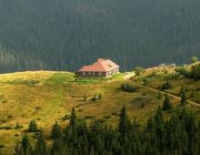 Carpathians_2011_7