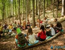 Размышления в лесу