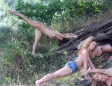 Асаны в корнях деревьев