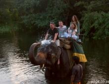 Купание слоном... мокро