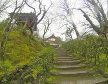 常寂光寺に階段 - Лестница к храму Дзёдзякко