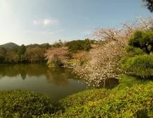 龍安寺に池 - Озеро Рёандзи