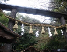 嵯峨野に神社の鳥居 (ворота в храм в Сагано)