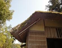 家の屋根 (крыша домика)