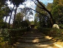 龍安寺に階段 - Лестница в храм Рёан
