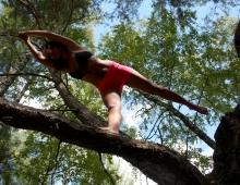 Йога равновесия