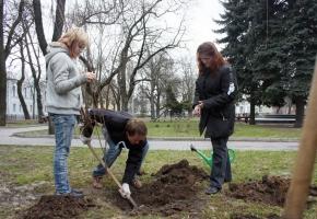 Правильно ли копаешь ?